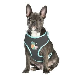 HARMAIS T-SHIRT JUICY